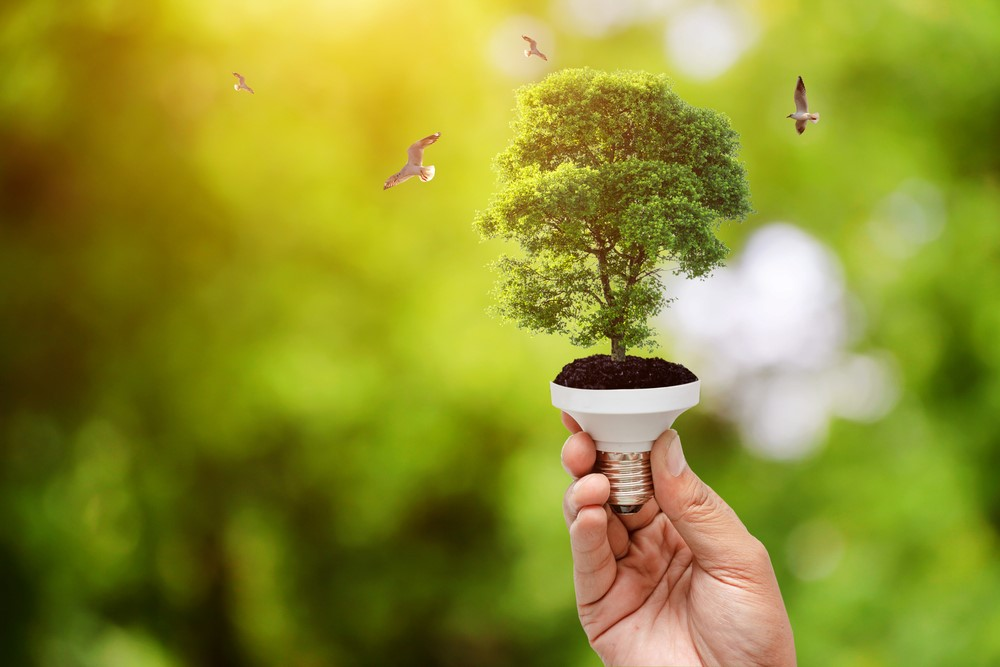 Noticias ecoforest energias renovables1