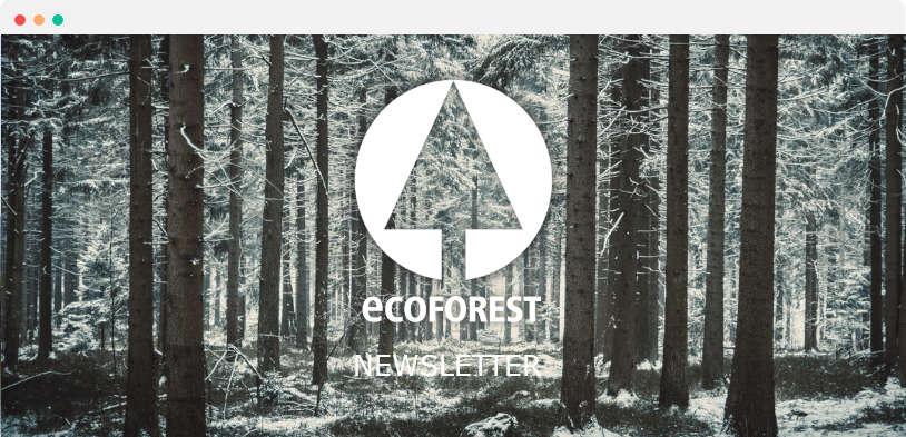 newsletter ecoforest