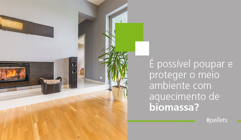 ecoforest proteger o planeta biomassa